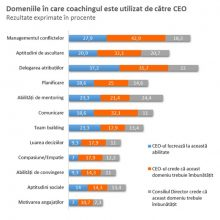 domenii-coaching-ceo1